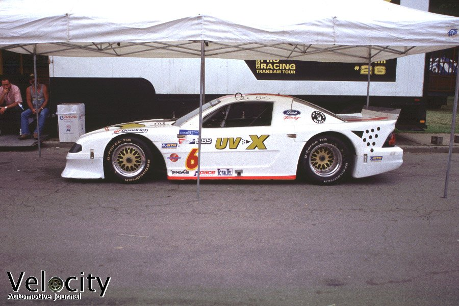 Picture Of 6 Mustang Cobra Scca Ntb Trans Am