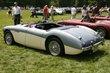 1956 Austin Healey 100M