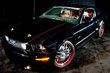 2004 Ford 2005 Mustang by bonspeed