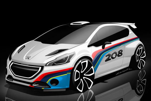 2013 Peugeot 208 Type R5