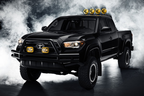 2015 Toyota Back to the Future Tacoma