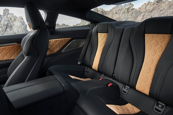 2020 BMW 8-Series M8 Competition Coupe Interior